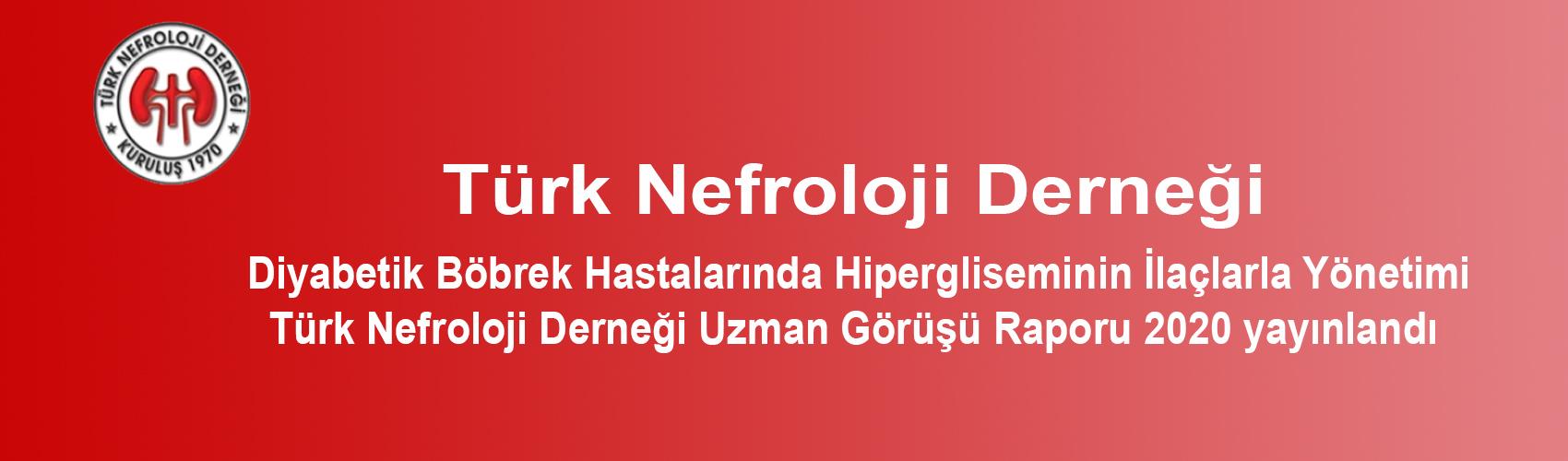 Türk Nefroloji Derneği Slide: Diyabetik Böbrek Hastalarında Hipergliseminin İlaçlarla Yönetimi – Türk Nefroloji Derneği Uzman Görüşü Raporu 2020
