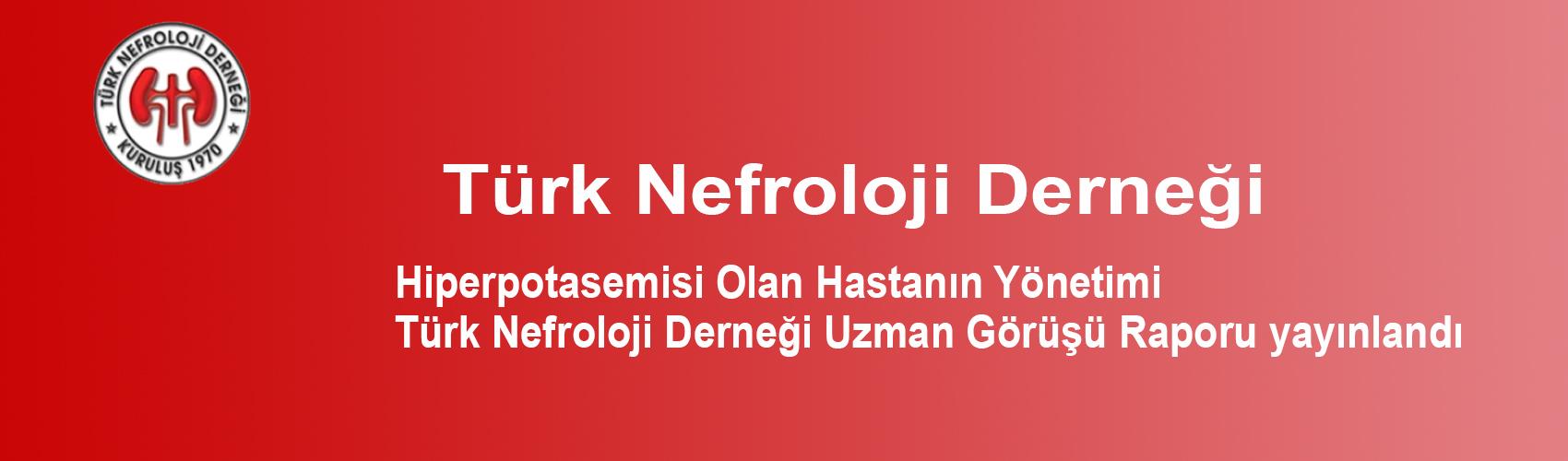 Türk Nefroloji Derneği Slide: Hiperpotasemisi Olan Hastanın Yönetimi - Türk Nefroloji Derneği Uzman Görüşü Raporu yayınlandı